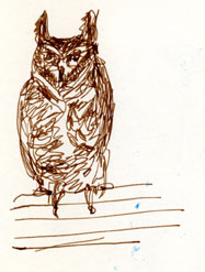 Great-horned owl, pen and ink