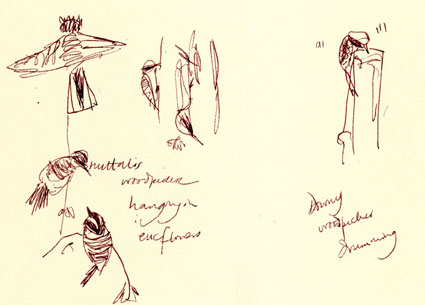 nuttall's woodpecker and downy woodpecker, pen and ink