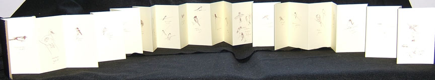 accordion book of birdathon, front
