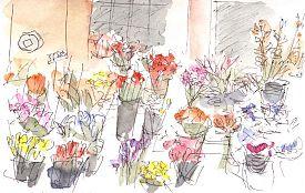 Florist on 18th Street