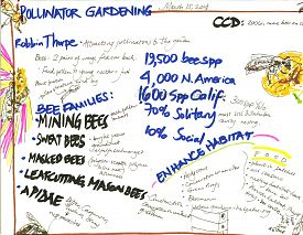 Sketchnotes from pollinator gardening workshop